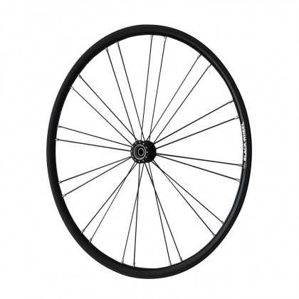 Black Wheel with black hub and black spokes